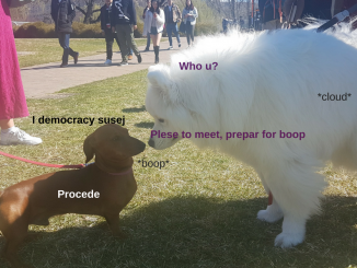 Shoobie meets susej; a boop ensues